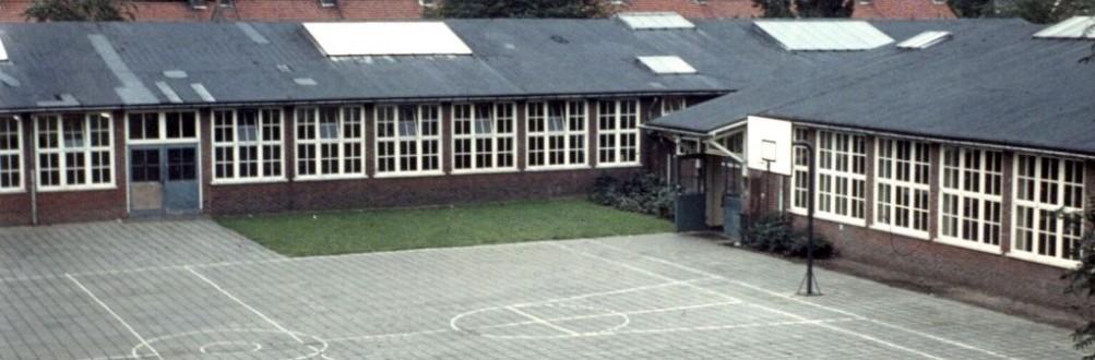 19772.jpg